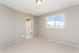 Photo 19: 9028 SCOTT Crescent in Edmonton: Zone 14 House for sale : MLS®# E4250588