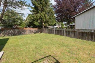 Photo 20: 11838 BONSON Road in Pitt Meadows: Central Meadows House for sale : MLS®# R2083009