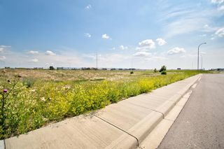 Photo 14: 11124 15 Street NE in Calgary: Stoney 1 Industrial Land for sale : MLS®# A1128526