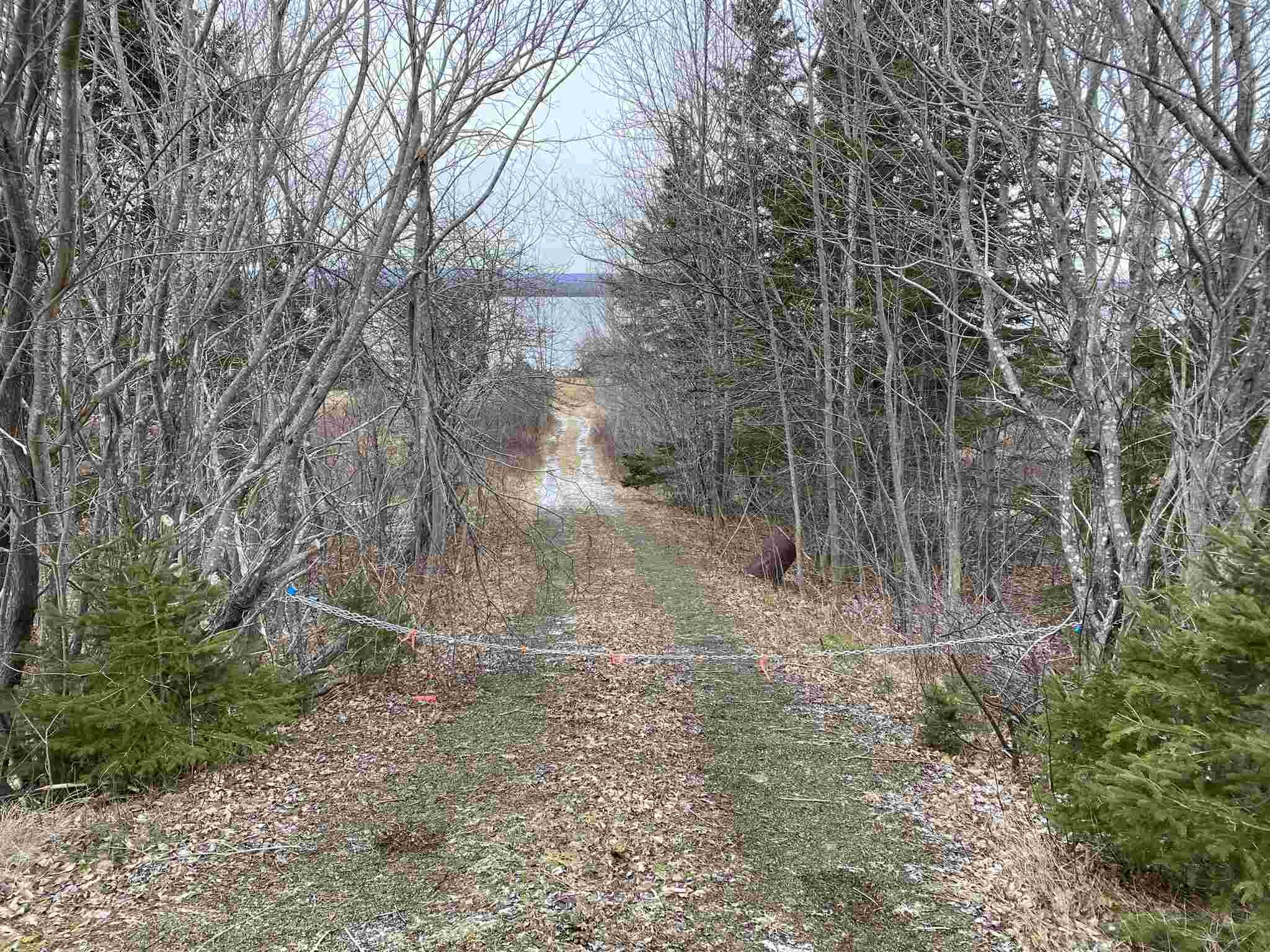 Photo 8: Photos: 8080 Marble Mountain Road in Malagawatch: 306-Inverness County / Inverness & Area Vacant Land for sale (Highland Region)  : MLS®# 202101037