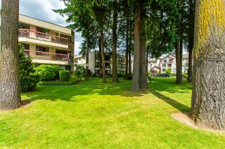 "Photo 34: 231 31955 OLD YALE Road in Abbotsford: Abbotsford West Condo for sale in ""EVERGREEN VILLAGE"" : MLS®# R2477163"