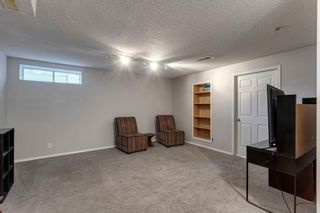 Photo 20: 55 Mt Apex Green SE in Calgary: McKenzie Lake Detached for sale : MLS®# A1052982