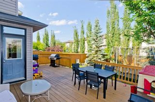 Photo 45: 307 CHAPARRAL RAVINE View SE in Calgary: Chaparral House for sale : MLS®# C4132756