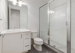 Photo 47: 3823 15A Street SW in Calgary: Altadore Semi Detached for sale : MLS®# A1079159