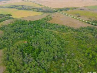 Photo 14: Rm Indian Head 160.39 acres in Indian Head: Farm for sale (Indian Head Rm No. 156)  : MLS®# SK867616