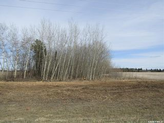 Photo 6: Tobin Lake Acreage Plot ( 5 Acres) in Moose Range: Lot/Land for sale (Moose Range Rm No. 486)  : MLS®# SK839734