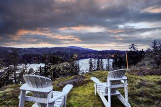 Photo 51: 236 Stevens Rd in : SW Prospect Lake House for sale (Saanich West)  : MLS®# 871772