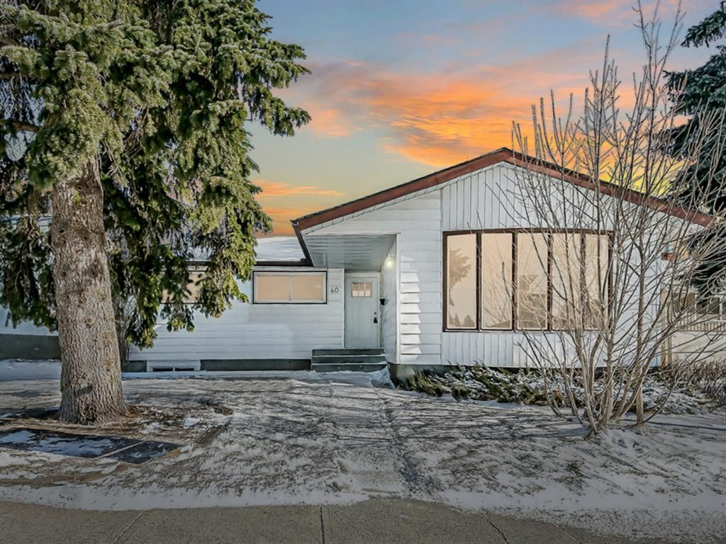 Main Photo: 40 Fyffe Road SE in Calgary: Fairview Detached for sale : MLS®# A1087903