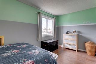 Photo 9: 3 2727 Rundleson Road NE in Calgary: Rundle Row/Townhouse for sale : MLS®# A1118033