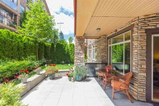 """Photo 18: 134 8288 207A Street in Langley: Willoughby Heights Condo for sale in """"WALNUT RIDGE 2-YORKSON CREEK"""" : MLS®# R2285005"""