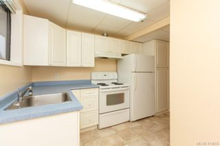 Photo 25: 1813 Rossiter Pl in VICTORIA: SE Lambrick Park House for sale (Saanich East)  : MLS®# 830624