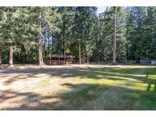 Photo 34: 2186 198 Street in Langley: Brookswood Langley House for sale : MLS®# R2489409