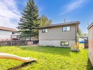 Photo 17: 40 Castlepark Road NE in Calgary: Castleridge Detached for sale : MLS®# A1146252