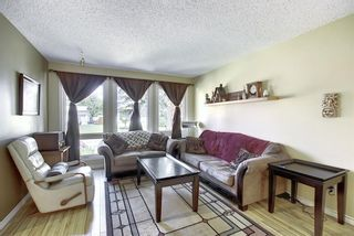 Photo 10: 408 QUEENSLAND Circle SE in Calgary: Queensland Detached for sale : MLS®# A1020270