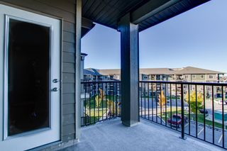Photo 35: 420 274 MCCONACHIE Drive in Edmonton: Zone 03 Condo for sale : MLS®# E4265134