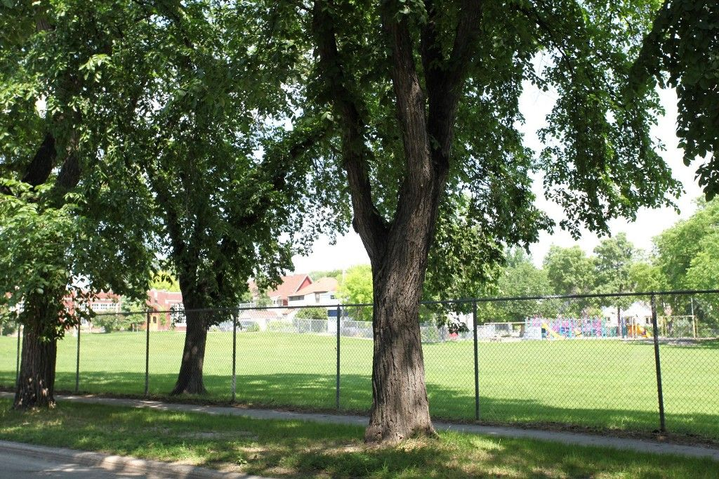 Photo 56: Photos: 470 Clifton Street in Winnipeg: Wolseley Single Family Detached for sale (West Winnipeg)  : MLS®# 1314152