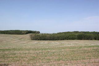 Photo 12: 39103 Highway 20: Sylvan Lake Detached for sale : MLS®# C4192272