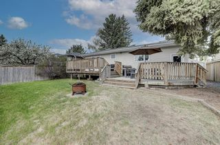 Photo 41: 4520 Namaka Crescent NW in Calgary: North Haven Detached for sale : MLS®# A1147081