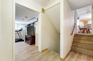 Photo 28: 6740 34 Avenue NE in Calgary: Temple Detached for sale : MLS®# A1121100