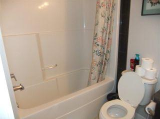 Photo 16: 5138 Corvette Street in Edmonton: Zone 27 House for sale : MLS®# E4241742