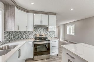 Photo 5: 5233 Martin Crossing Drive NE in Calgary: Martindale Detached for sale : MLS®# A1110063