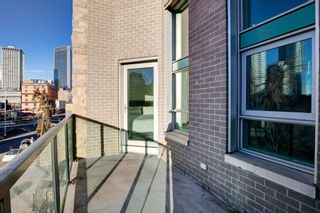 Photo 26: #305 788 12 Avenue SW in Calgary: Beltline Apartment for sale : MLS®# A1058912