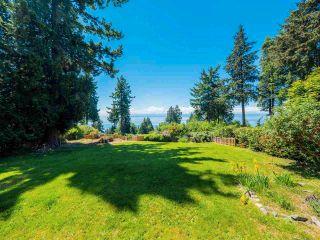 Photo 5: 7883 REDROOFFS Road in Halfmoon Bay: Halfmn Bay Secret Cv Redroofs House for sale (Sunshine Coast)  : MLS®# R2585172