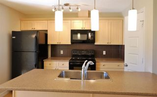 Photo 4: 1419 CUNNINGHAM Drive in Edmonton: Zone 55 Townhouse for sale : MLS®# E4239672