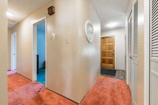Photo 13: 10220 166 Avenue in Edmonton: Zone 27 House for sale : MLS®# E4252052