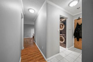 """Photo 7: 311 9620 MANCHESTER Drive in Burnaby: Cariboo Condo for sale in """"Brookside Park"""" (Burnaby North)  : MLS®# R2578998"""
