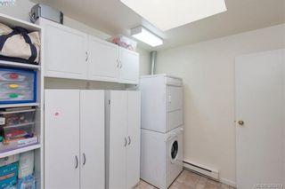 Photo 14: 4019 Malton Ave in VICTORIA: SE Mt Doug House for sale (Saanich East)  : MLS®# 770733