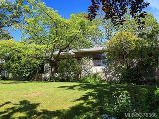 Photo 7: 3505 James Hts in VICTORIA: SE Cedar Hill House for sale (Saanich East)  : MLS®# 759789