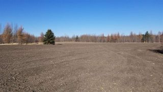 Photo 9: #3-51227 RGE RD 270 Road: Rural Parkland County Rural Land/Vacant Lot for sale : MLS®# E4211009