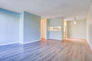 Photo 16: 210 525 56 Avenue SW in Calgary: Windsor Park Apartment for sale : MLS®# A1086866