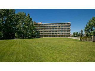 Photo 38: 501 3204 Rideau Place SW in Calgary: Rideau Park Apartment for sale : MLS®# A1083817