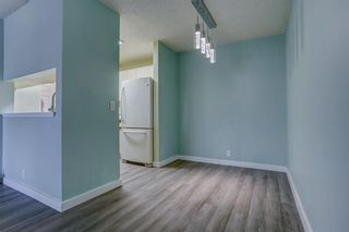 Photo 11: 210 525 56 Avenue SW in Calgary: Windsor Park Apartment for sale : MLS®# A1086866