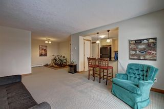 Photo 11: 301 315 50 Avenue SW in Calgary: Windsor Park Apartment for sale : MLS®# A1046281