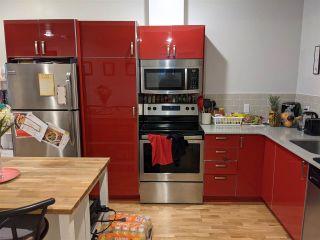 Photo 29: 7727 110 Street in Edmonton: Zone 15 House for sale : MLS®# E4235750