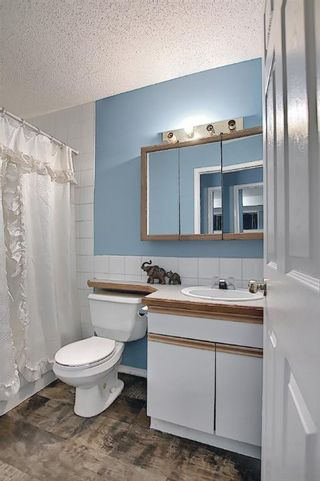 Photo 20: 78 Appleburn Close SE in Calgary: Applewood Park Detached for sale : MLS®# A1100841