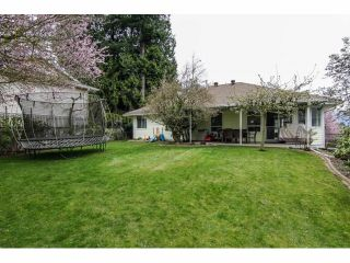Photo 19: 35287 MARSHALL Road in Abbotsford: Abbotsford East House for sale : MLS®# F1407538