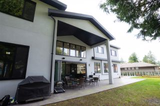 Photo 38: 19955 38 AVENUE in Langley: Brookswood Langley House for sale : MLS®# R2530299