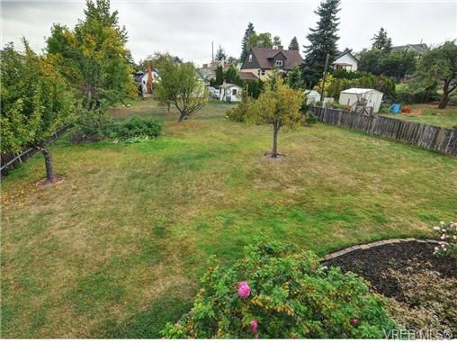 Photo 19: Photos: 774 Snowdrop Ave in VICTORIA: SW Marigold House for sale (Saanich West)  : MLS®# 693817