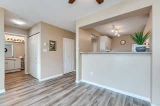 """Photo 15: 704 12148 224 Street in Maple Ridge: East Central Condo for sale in """"Panorama"""" : MLS®# R2622635"""