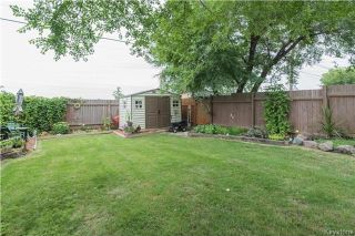 Photo 17: 337 Larche Crescent in Winnipeg: East Transcona Residential for sale (3M)  : MLS®# 1721126