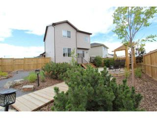 Photo 19: 1027 PRAIRIE SPRINGS Hill SW: Airdrie Residential Detached Single Family for sale : MLS®# C3531272