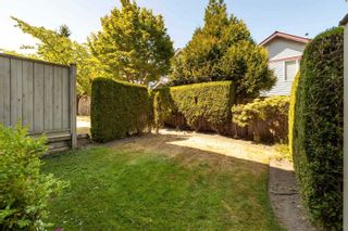 """Photo 37: 42 14877 58 Avenue in Surrey: Sullivan Station Townhouse for sale in """"REDMILL"""" : MLS®# R2603819"""
