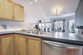 Photo 4: 314 1920 14 Avenue NE in Calgary: Mayland Heights Apartment for sale : MLS®# A1112494
