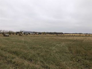 Photo 11: Twp Rd 583 Rge Rd 271: Rural Westlock County Rural Land/Vacant Lot for sale : MLS®# E4218422