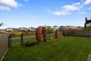 Photo 48: 247 Wild Rose Street: Fort McMurray Detached for sale : MLS®# A1151199