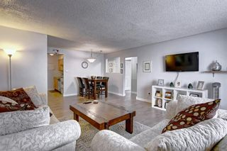 Photo 10: 8 6827 Centre Street NW in Calgary: Huntington Hills Apartment for sale : MLS®# A1133167